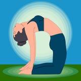 Yoga Exercises - Camel pose. Vector illustration Stock Photography