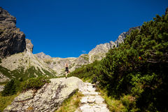 Yoga exercising in Tatry mountains Stock Photography