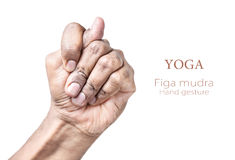 Yoga Figa mudra. Hand in Figa mudra by Indian man isolated at white background. Free space for your text Stock Images