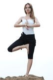 Yoga and fitness. royalty free stock photos