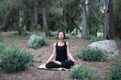 Yoga In Forest Royalty Free Stock Photo