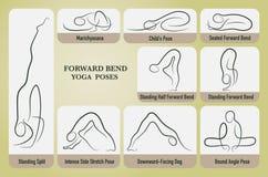 Yoga forward bend poses set. Stock Images