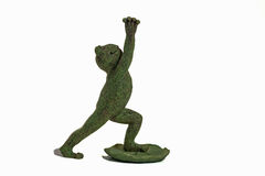 Yoga Frog Stock Image
