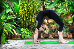 Yoga in the garden Royalty Free Stock Photo