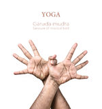 Yoga Garuda mudra Stock Photo