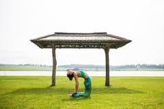 Yoga girl training outdoors on nature background. Royalty Free Stock Image