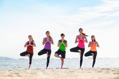 Yoga group of people doing tree pose and namaste with calm relax Stock Photos