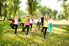 Yoga group, tree position, Stock Images