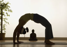 Yoga-Höhepunkte Lizenzfreie Stockfotografie