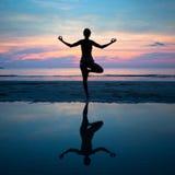 Yoga, harmonie van gezondheid Royalty-vrije Stock Afbeelding