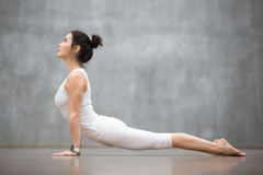 Yoga hermosa: Actitud ascendente del perro del revestimiento imagenes de archivo