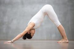 Yoga hermosa: Actitud boca abajo del perro Fotografía de archivo libre de regalías