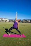 Yoga in het park royalty-vrije stock foto