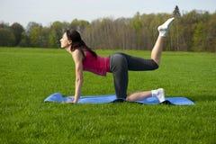 Yoga in het park. De tijger stelt Stock Foto