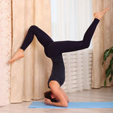 Yoga at home. Attractive woman making yoga at home, morning. supported handstand Royalty Free Stock Photo
