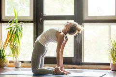 Yoga at home: Ustrasana Pose Royalty Free Stock Photography