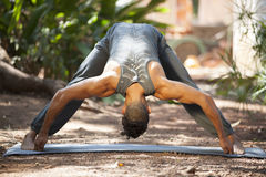 Yoga i natur Arkivfoto