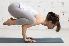 Yoga Indoors: Crane Pose Stock Images