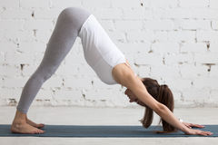 Yoga Indoors: Downward Facing Dog Pose. Beautiful young woman working out indoors, doing yoga exercise in the room with white walls, downward facing dog pose stock images