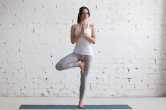Yoga Indoors: Tree Pose Royalty Free Stock Photos