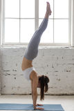 Yoga inomhus: Handstans poserar Royaltyfria Foton
