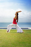 Yoga lifestyle woman Stock Images
