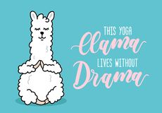 Yoga llama illustration with inscriprion This yoga llama lives w royalty free illustration