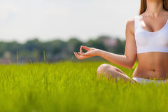 Yoga. In the lotus position on the nature of the close-up Royalty Free Stock Image