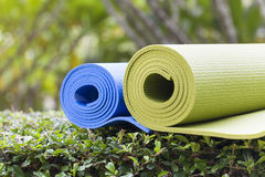 Yoga mats. The colorful yoga mats are set on grass Royalty Free Stock Image
