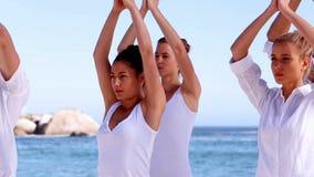 Yoga meditation class stock video footage