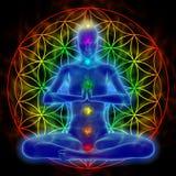 Yoga and meditation - flower of life. Illustration of woman meditating, symbol flower of life Royalty Free Stock Image