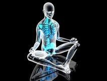 Yoga Meditation pose Royalty Free Stock Photos