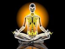 Yoga Meditation pose Royalty Free Stock Photography