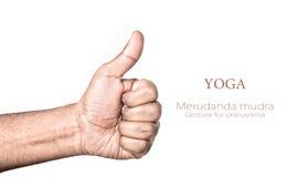 Yoga merudanda mudra Stockbild