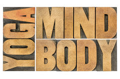 Yoga, mind, body abstract. Yoga, mind, body word abstract - isolated text in letterpress wood type Stock Image
