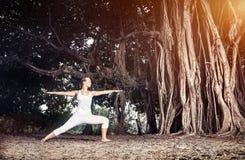 Yoga nära banyanträd Arkivfoto