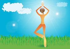 Yoga in the nature. Girl, yoga in the nature on the grass Stock Photo