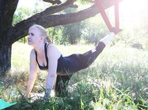 Beautiful girl practicing fly-yoga at the tree .Advanced Yoga stock photo