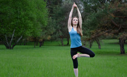 Yoga on the nature Royalty Free Stock Photography