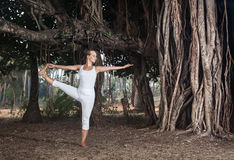 Yoga near banyan tree Royalty Free Stock Images