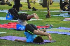 Yoga nel parco Fotografia Stock Libera da Diritti