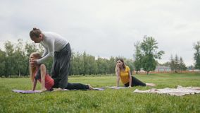 Yoga in ochtendpark - de instructeur leidt jonge vrouwen voor flexibiliteit op stock video