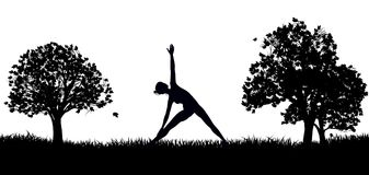 Yoga ou Pilates en silhouette de parc Photos libres de droits