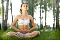 Yoga outdoors. Stock Images