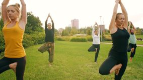Yoga på offentligt parkerar stock video