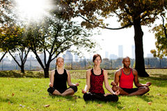 Yoga in Park royalty-vrije stock foto's