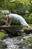 Yoga in Park 20 Stockbild