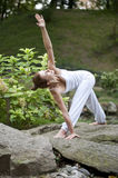 Yoga in park 21 Royalty Free Stock Images