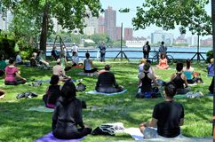 Yoga in the park. Yoga in Socrates Sculpture Park, Astoria Royalty Free Stock Image