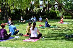 Yoga in the park Stock Image
